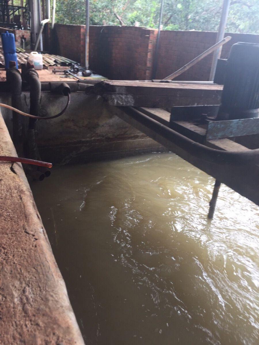 Hệ thống xử lý nước thải nhà máy cao su Bình Phước